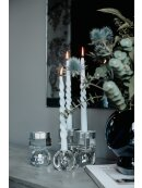 SPECKTRUM - FULLY CURLED CANDLE 4 PIECES